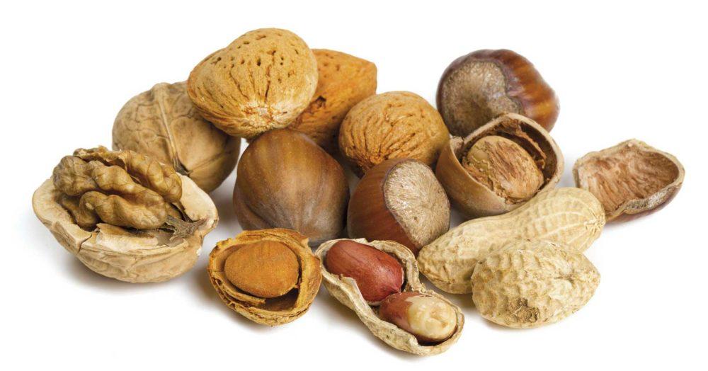 Mat som innehåller mycket protein