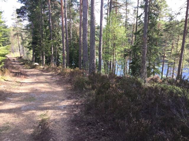 160508 Löpning herrsjön