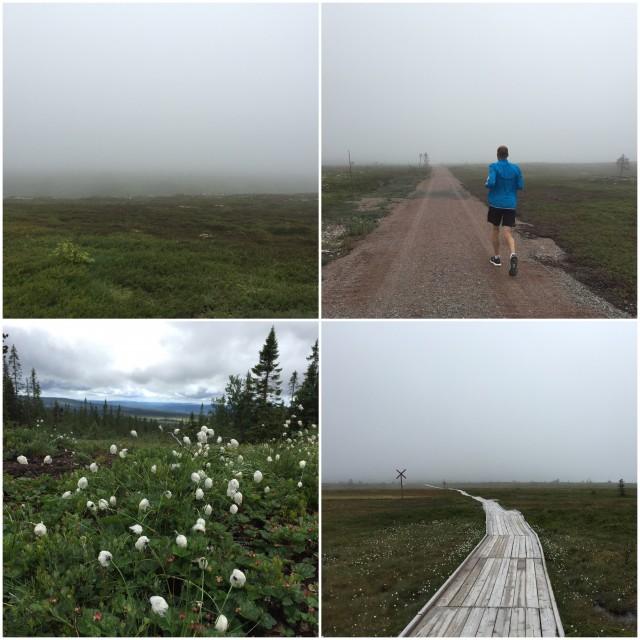 Löpning på Trysilfjellet