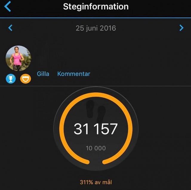 160625 Stegrekord