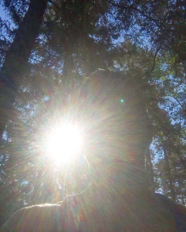 160724. Vickan i solen