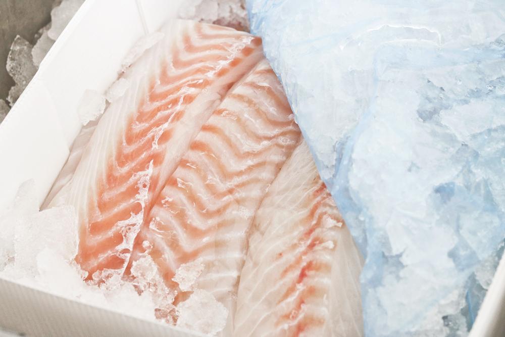 friskfisk1