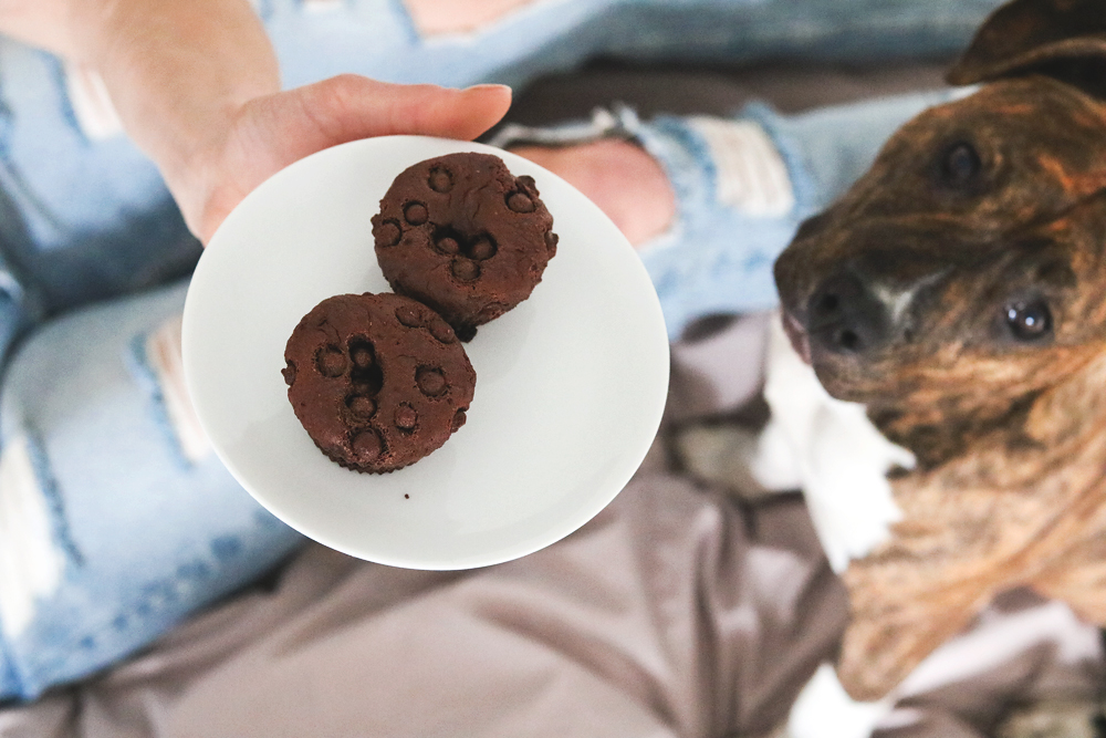 muffinsnala1