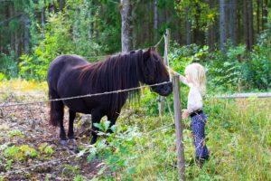 Cykeltur till hästen