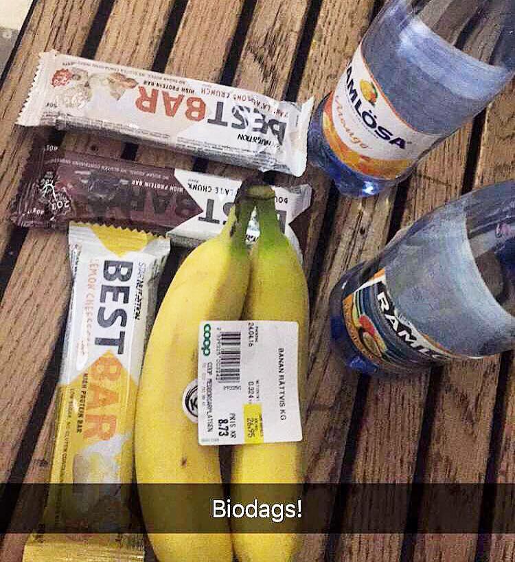 biogodis